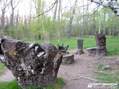 Cascadas Purgatorio,Bosque Finlandia; actividades madrid; conoce gente